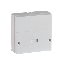 BT UK NTE 5a Master Socket